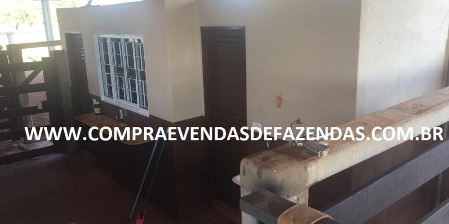 FAZENDA INOCÊNCIA MS  - Foto 30 de 30