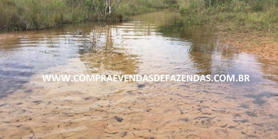 FAZENDA INOCÊNCIA MS  - Foto 8 de 30