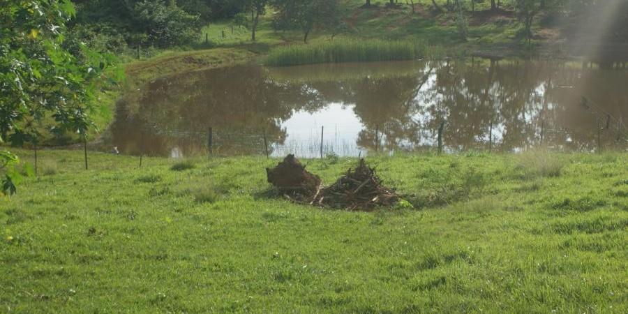 FAZENDA À VENDA REGIÃO DE PARANAÍBA MS  - Foto 23 de 27
