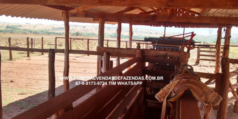 FAZENDA A VENDA PARANAÍBA  MS - Foto 4 de 21