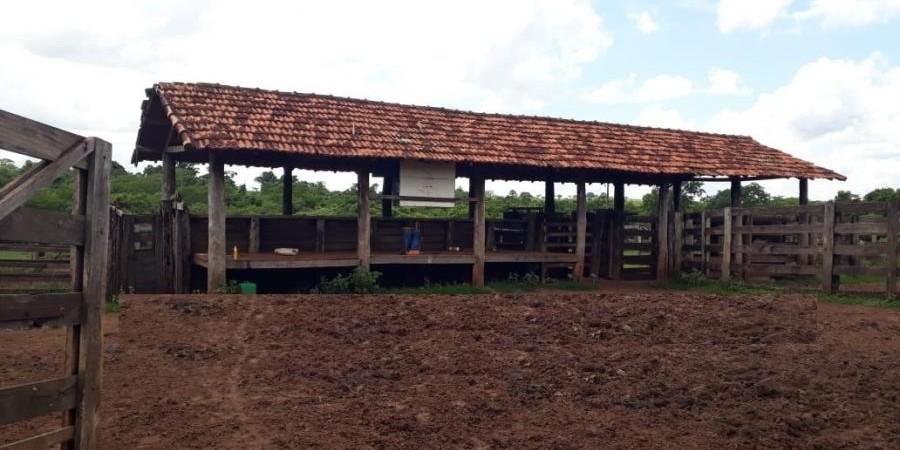 FAZENDA À VENDA  PARANAÍBA MS - Foto 11 de 11