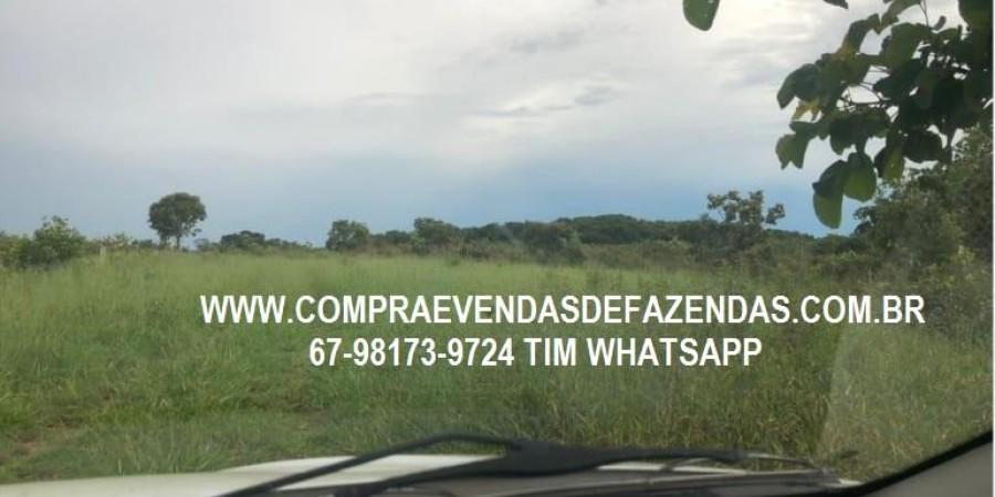 FAZENDA A VENDA SERRANÓPOLIS GO - Foto 2 de 9