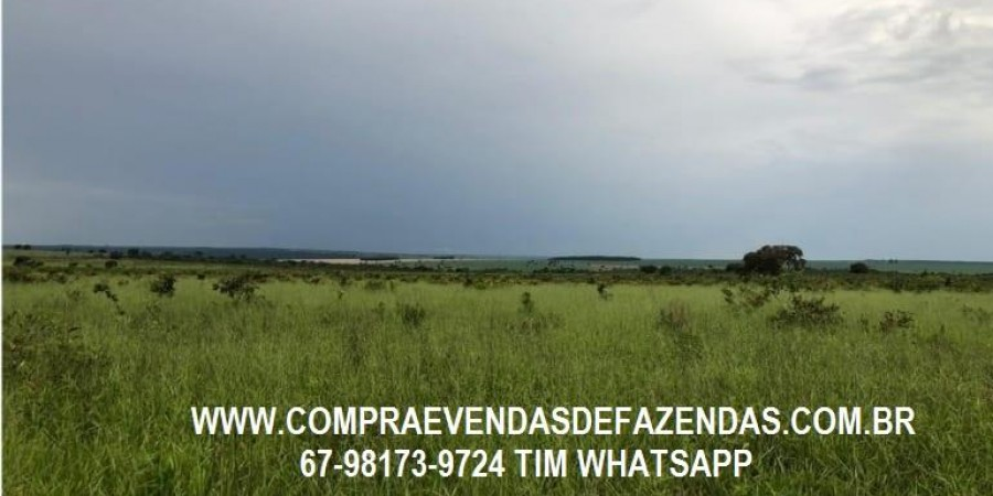 FAZENDA A VENDA SERRANÓPOLIS GO - Foto 4 de 9