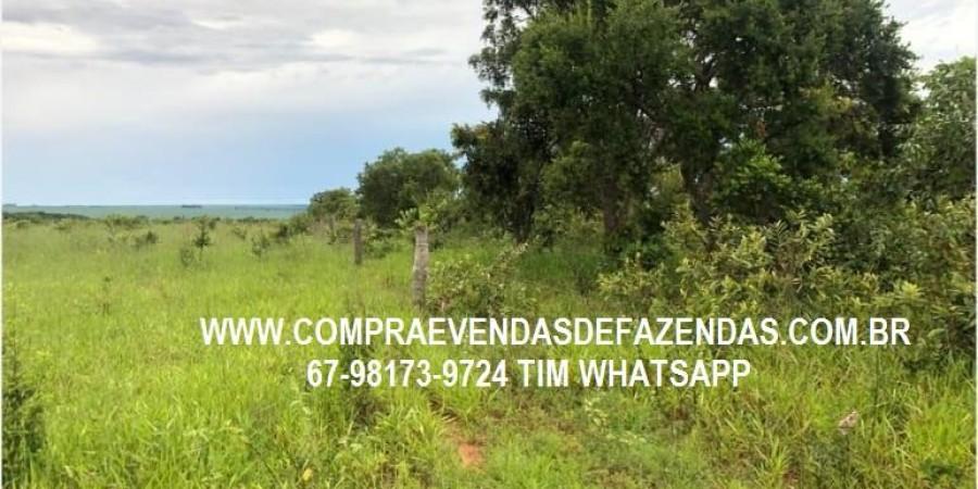 FAZENDA A VENDA SERRANÓPOLIS GO - Foto 9 de 9