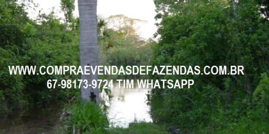 FAZENDA A VENDA NO  INOCÊNCIA MS - Foto 21 de 21