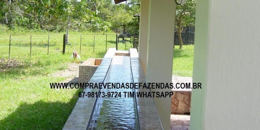 FAZENDA A VENDA NO  INOCÊNCIA MS - Foto 2 de 21