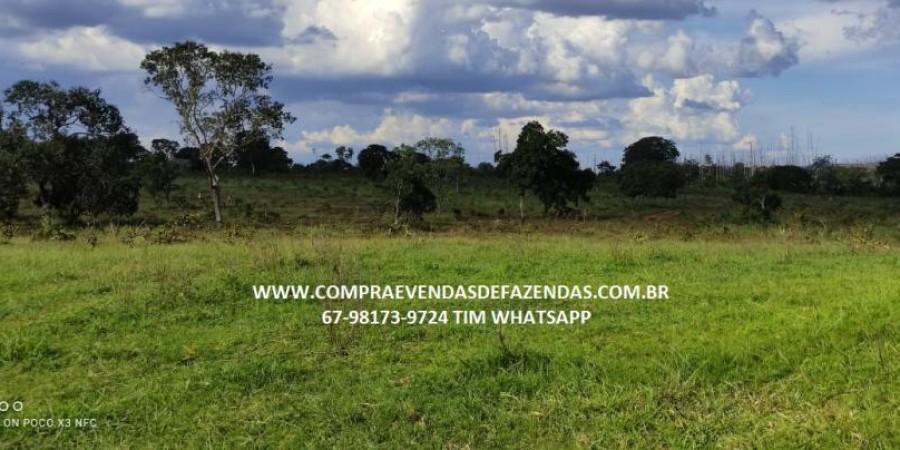 FAZENDA A VENDA NA REGIÃO POXORÉO MT - Foto 1 de 29