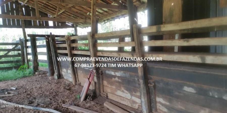 FAZENDA A VENDA NA REGIÃO POXORÉO MT - Foto 19 de 29