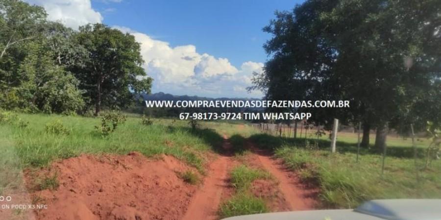 FAZENDA A VENDA NA REGIÃO POXORÉO MT - Foto 5 de 29