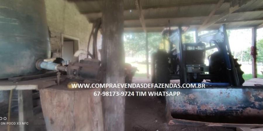 FAZENDA A VENDA NA REGIÃO POXORÉO MT - Foto 7 de 29