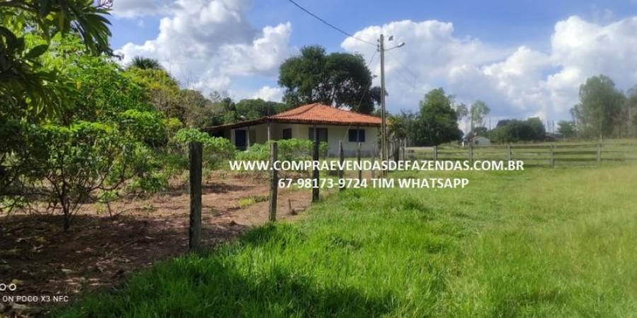 FAZENDA A VENDA NA REGIÃO POXORÉO MT - Foto 9 de 29