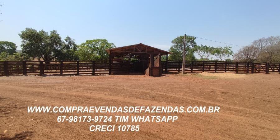 FAZENDA A VENDA  PONTAL DO ARAGUAIA MT - Foto 1 de 16