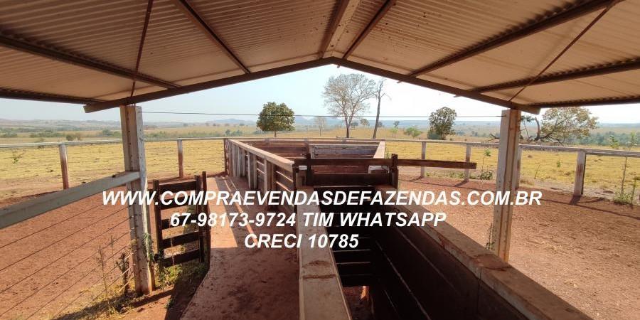 FAZENDA A VENDA  PONTAL DO ARAGUAIA MT - Foto 2 de 16