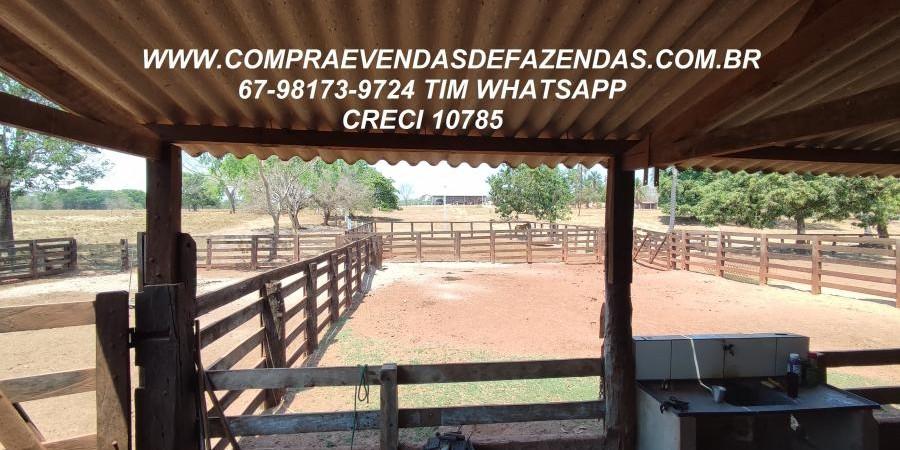 FAZENDA A VENDA  PONTAL DO ARAGUAIA MT - Foto 14 de 16