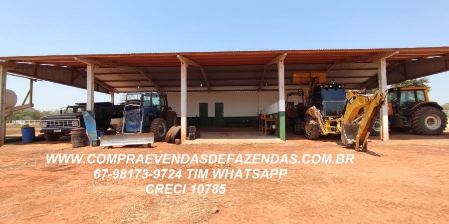 FAZENDA A VENDA  PONTAL DO ARAGUAIA MT - Foto 15 de 16