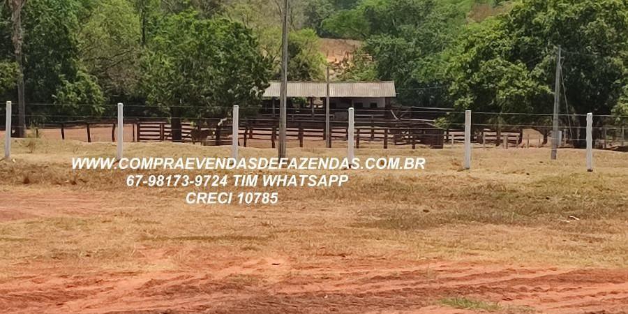 FAZENDA A VENDA  PONTAL DO ARAGUAIA MT - Foto 16 de 16