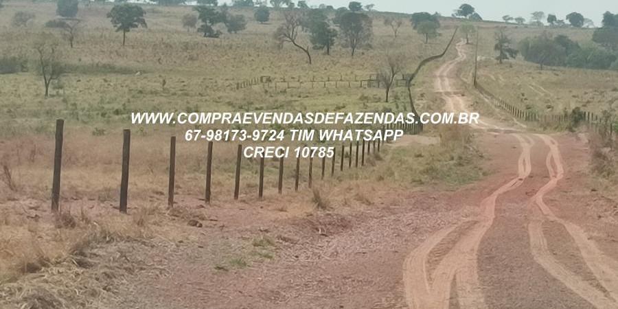 FAZENDA A VENDA  PONTAL DO ARAGUAIA MT - Foto 6 de 16
