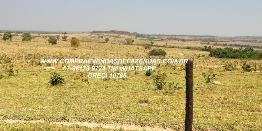 FAZENDA A VENDA  PONTAL DO ARAGUAIA MT - Foto 7 de 16